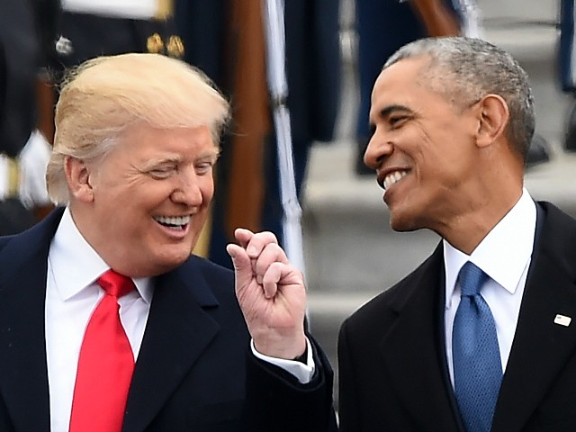 Donald Trump Approval Rating Surpasses Barack Obama at Same Point in Presidency