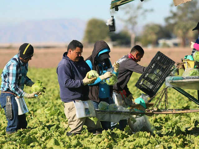 Donald Trump Threatens Veto of Cheap Drug Bill -- but Not Farmworker Amnesty