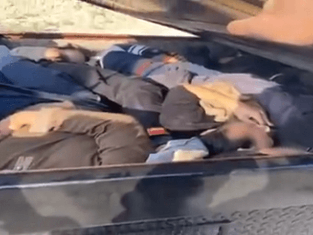 VIDEO: Ten Chinese Migrants Apprehended in Arizona After Vehicle Pursuit near Border