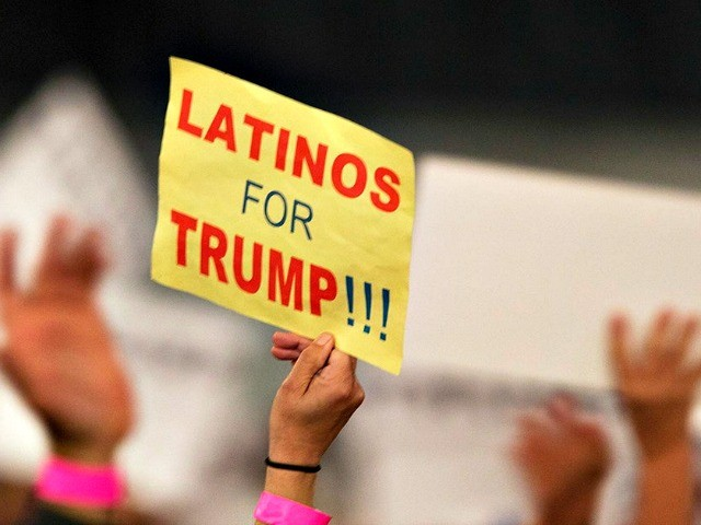 Nolte: Left Panics over Hispanic Support for Trump