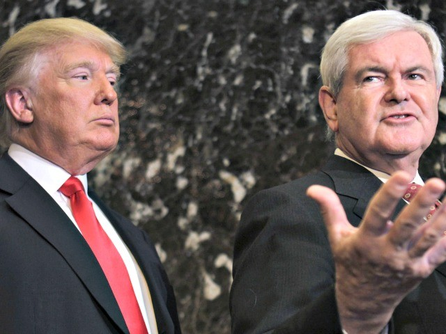 Newt Gingrich: Trump Will Be Remembered as 'Historic Figure' for Coronavirus Response