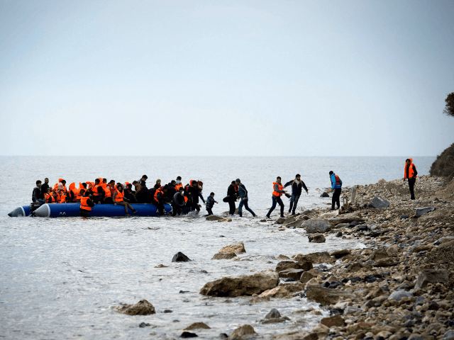 Audit Reveals Huge Growth of Pro-Migration NGOs with Millions in Revenue