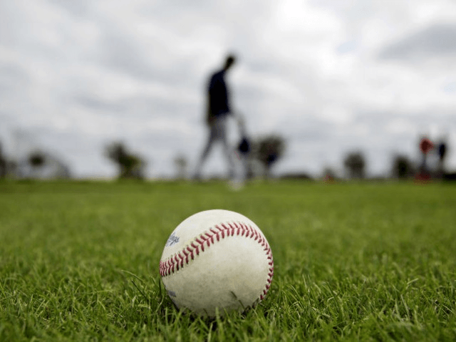 Charles Hurt: Baseball Has the Answers