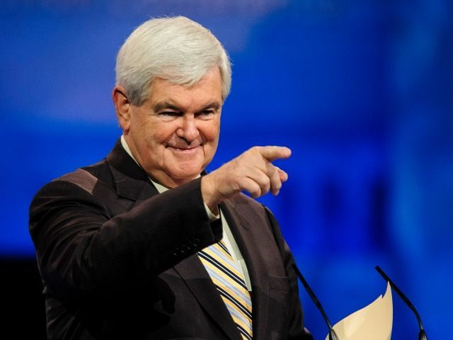 Newt Gingrich: Too Much Power Is Concentrated in the Hands of Big Tech CEOs