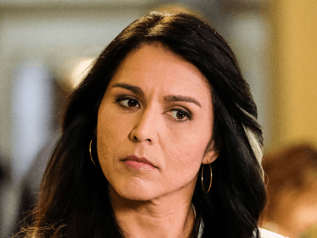 Tulsi Gabbard Snubbed by DNC: 'I Was Not Invited to Participate in Any Way'