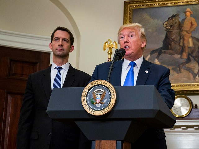 Tom Cotton Confident Trump Will Peacefully Transfer Power in 2025
