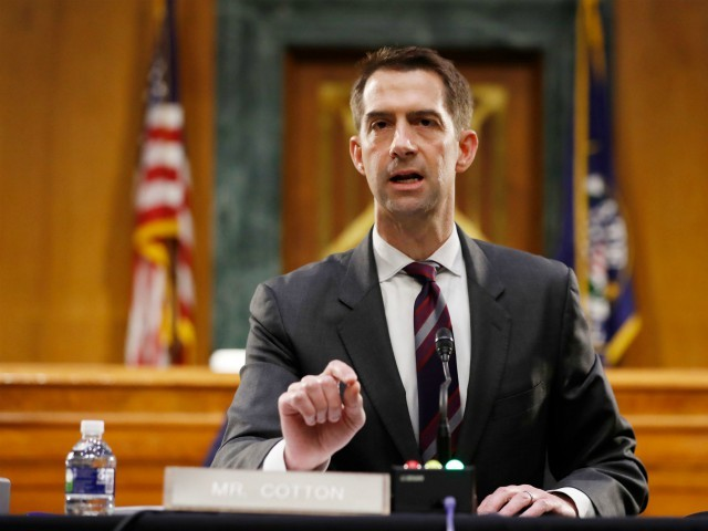 Tom Cotton: 'I'm Confident' of Peaceful Transfer of Power in January 2025 -- 'After President Trump Finishes His Second Term'