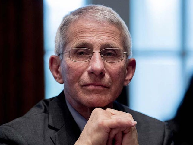 Fauci: Return to Pre-Coronavirus Normality Will Be 'Well into 2021'