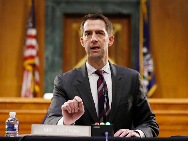 Tom Cotton: Joe Biden Presidency Would Cause 'Massive Surge' of Illegal Immigration