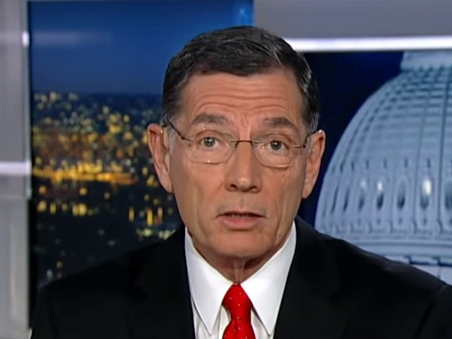 Barrasso: Coronavirus Relief Done Months Ago Had Pelosi Decided Not to 'Play Politics'