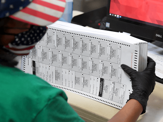 DeKalb County to Manually Scan 19,000 Ballots After 'Technical Issues' Arise