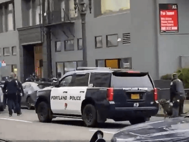 WATCH: Protesters Hamstring Portland Police Efforts to Help Armed Suicidal Man