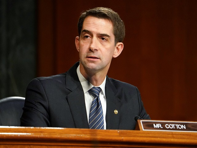 Cotton: Dems Going to Pay the Price at the Ballot Box for Biden's 'Extremely Unpopular' Immigration Policy