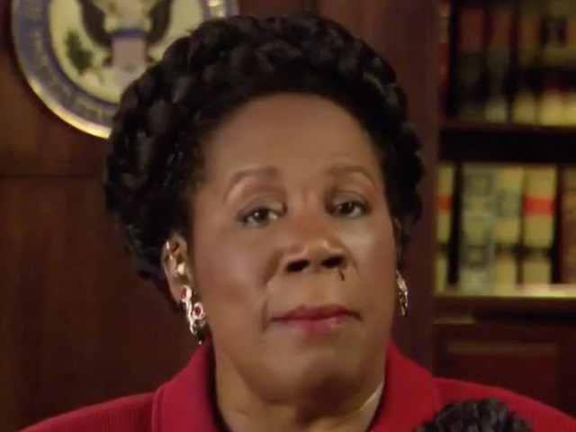 Watch: Dem Rep Sheila Jackson Lee Does MSNBC Interview with a Nosebleed