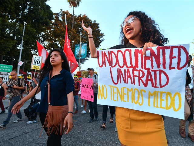 Nearly Two out of Five Swing-Voters Say DACA Amnesty 'Should Not Be a Priority'