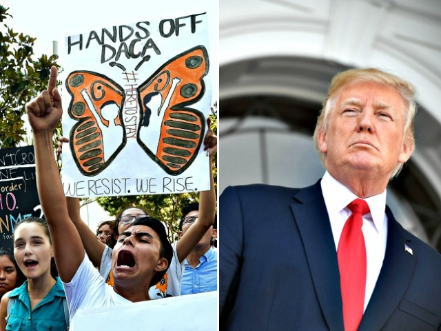 'A Presidency-Defining Moment' Looms: All Eyes on Donald Trump as DACA Amnesty Deal Lurks in January Spending Fight