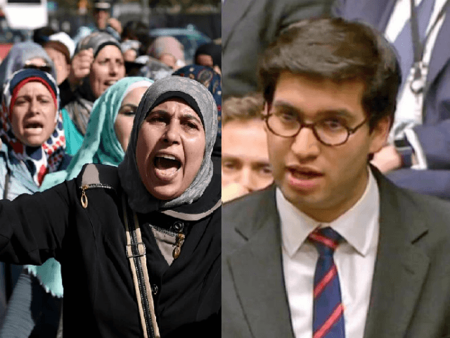 Politicians Howl in Fury after Non-White MP Explains How Chain Migration Bill Will Hurt the UK