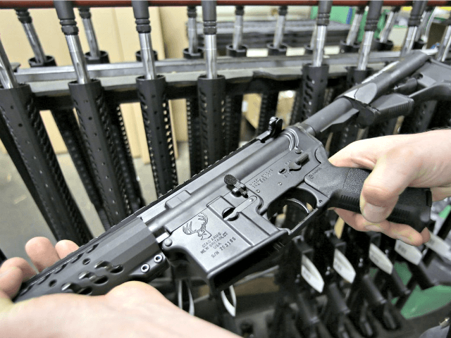 'Assault Weapons' Ban Fails in Delaware Committee, Senate Leader Bringing Up for Vote Anyway