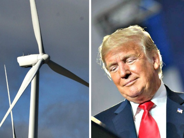 Donald Trump Explains Why He Hates Windmills