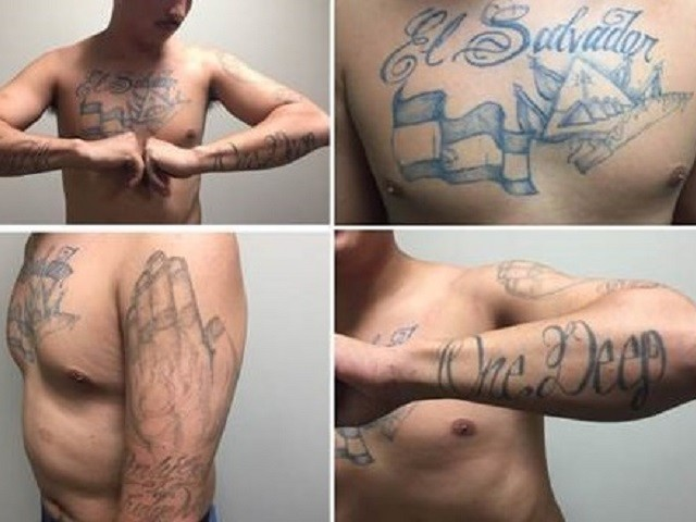 MS-13 Members, Criminal Child Sex Offenders Busted near Texas Border