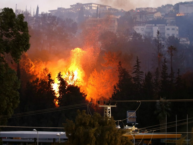 Report: Nearly 8,000 Acres of Land Destroyed by Palestinian Arson Terrorism