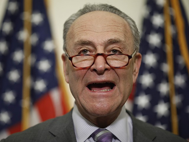 Schumer: Will Be 'Very Hard Task' to Turn Senate Blue