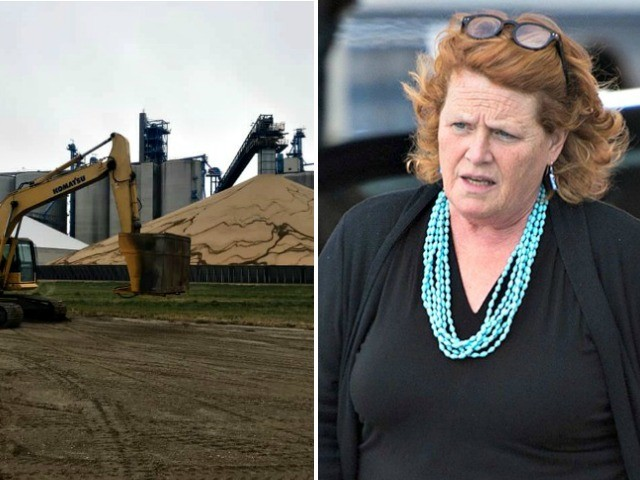 Heidi Heitkamp's Fake Soybean Slam Debunked by Farm She Used Employing China Tactic