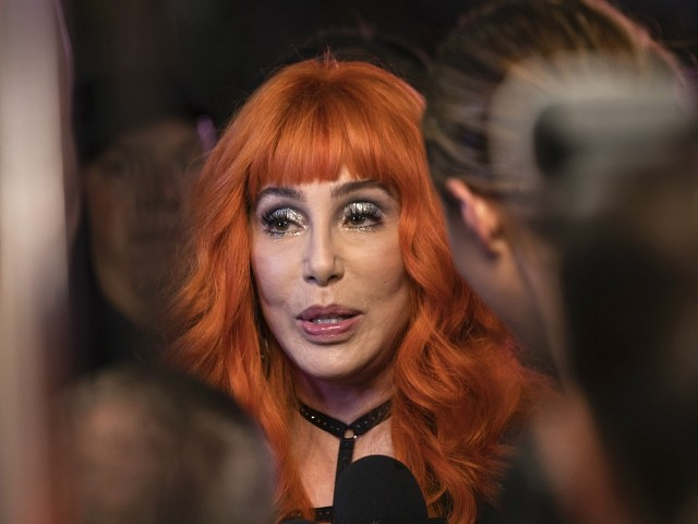 Cher: Facebook and Google 'Conspiring with Russia to Destroy' America