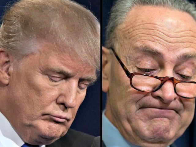 Senate Fails to Pass Trump-Backed Border Wall and Schumer Spending Bills