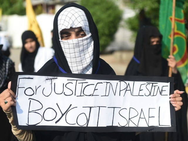 Israel: Terrorists Work for European-Funded Groups Promoting BDS