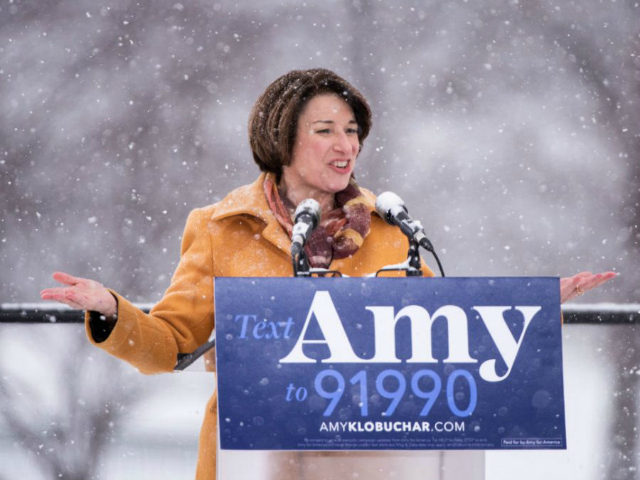 2020 'Snowman(woman)' Amy Klobuchar Insults Donald Trump's Hair