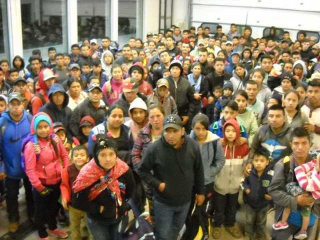 424 Migrants Apprehended at NM Border - Largest Single Group, Says BP