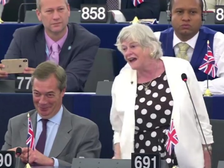 'Colonies Rebel Against Empires!' – Brexit Party's Ann Widdecombe Eviscerates EU in July 4th Speech