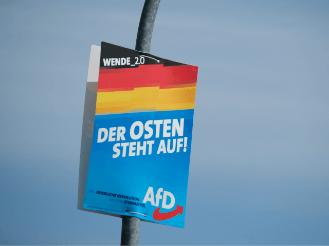 Court: German Populists Can Only Field 30 Candidates in Regional Election