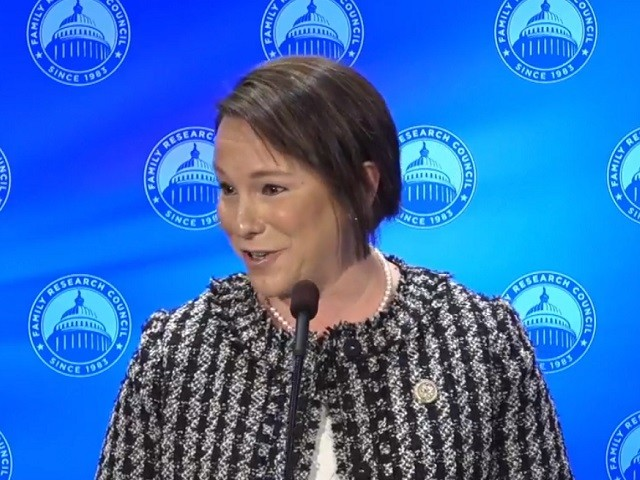 GOP Rep. Roby: Distractions in Democrat-led U.S. House 'Unbelievable,' Fixing Immigration Begins with Securing the Border