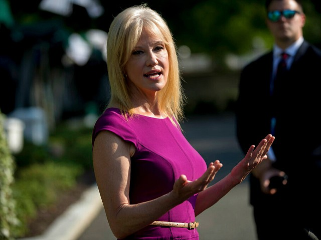 Kellyanne Conway: Media 'Driving Themselves Crazy'