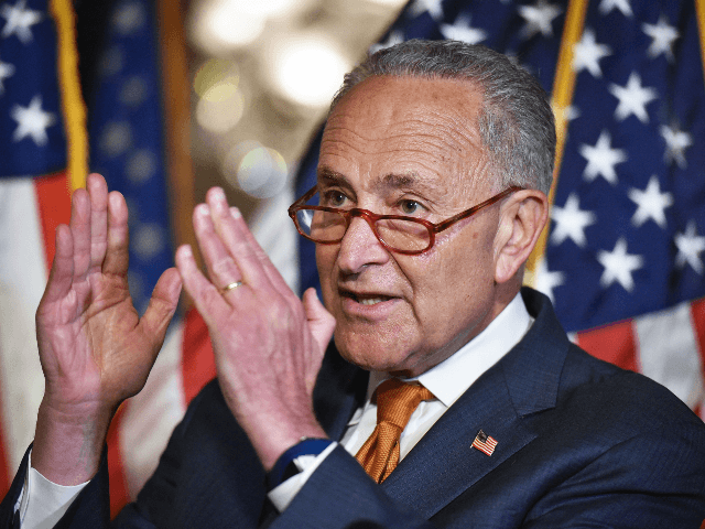 Schumer asks President Trump to Give GOP 'Political Cover' on Gun Control