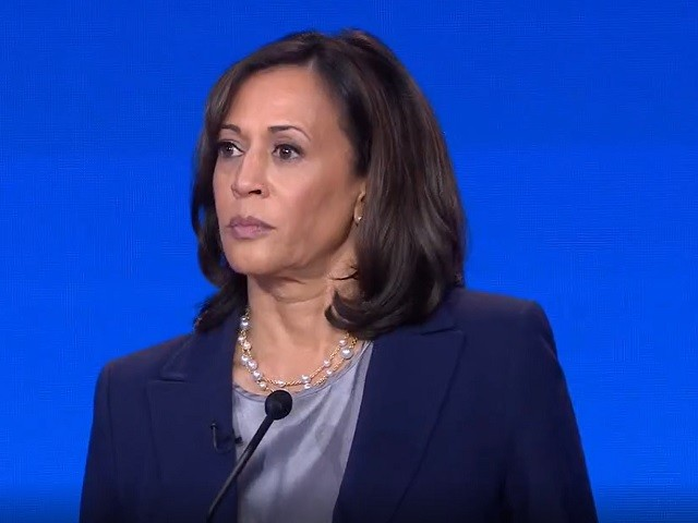 Harris on Power to Issue Gun EOs: 'Let's Say, Yes, We Can' 'And Yes, We Can'