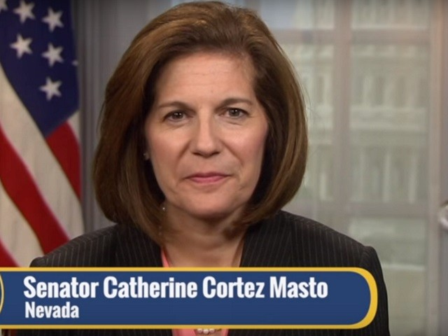 Dem Sen. Cortez Masto: 'We Don't Need to Wait for the President' on Background Checks
