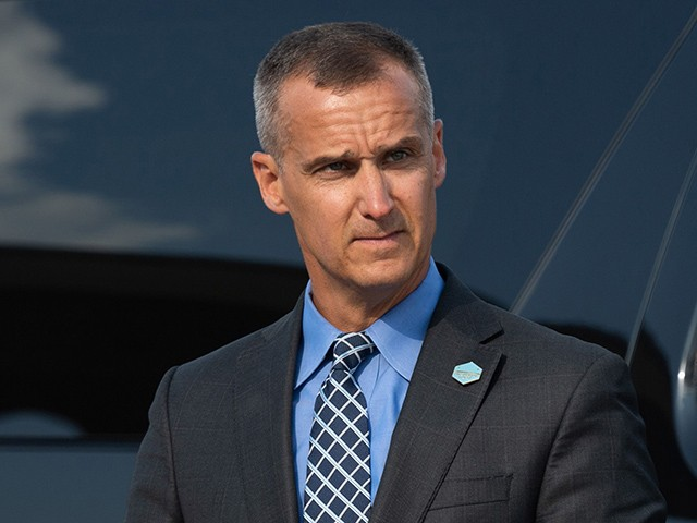 Lewandowski: Democrats Tried and Failed to Sabotage My Possible Senate Run