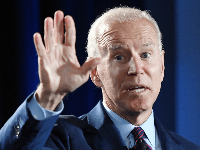Joe Biden Undercuts Own Electability Strategy: 'Almost Anybody' Could Beat Trump