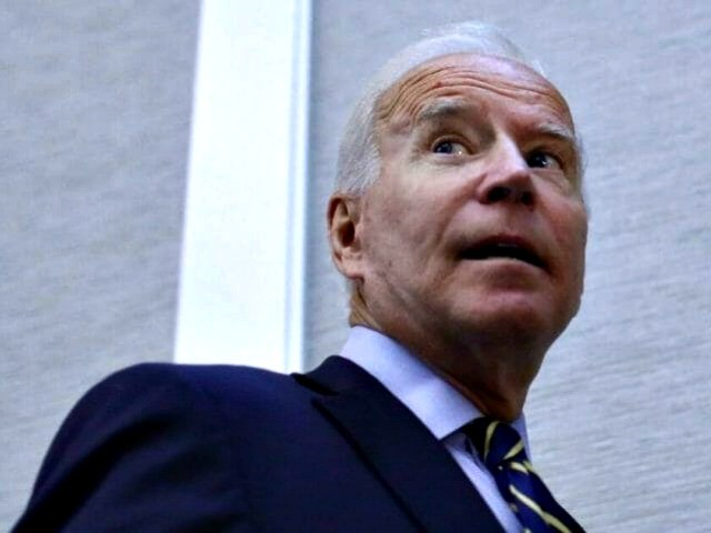 Joe Biden: Owners Should Be Liable if Guns 'Not Under Lock and Key'