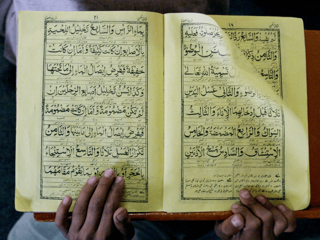 Norwegian Justice Minister Says Quran Burning Part of Freedom of Speech
