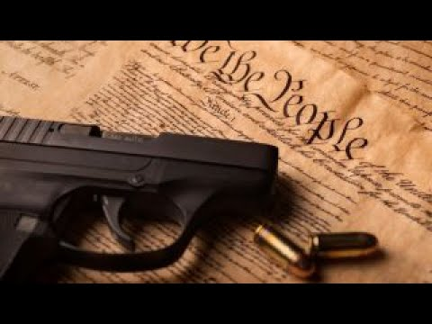 Starnes: Michigan foster parents forced to lose gun rights