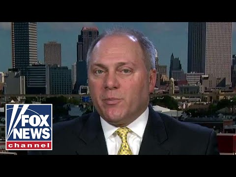 Scalise: Democrats' call for violence a threat to our democracy